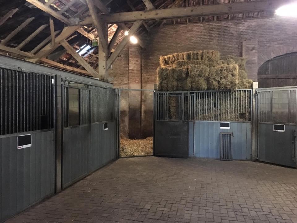 weiland stallen vakantie buitenbaan paard alphen brabant weidegang