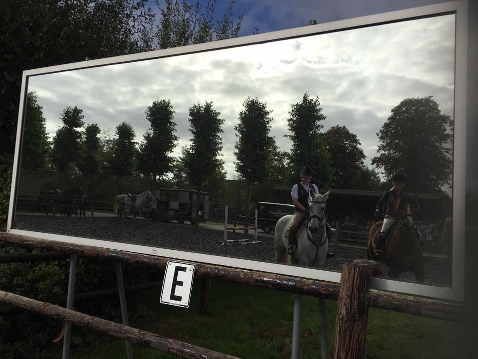 weiland vakantie buitenbaan paard alphen brabant weidegang