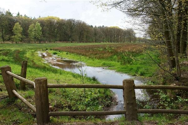 Foto: www.dehoevens.nl
