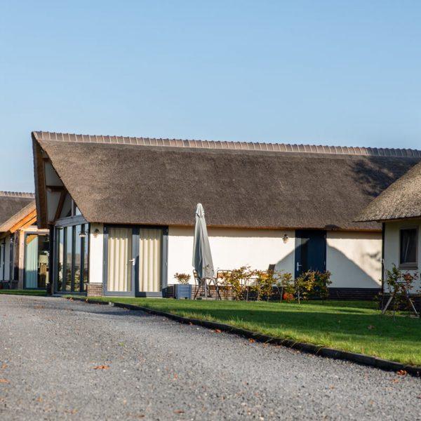 Villa d'oro droomeind vakantiewoningen en paardenhotel 26