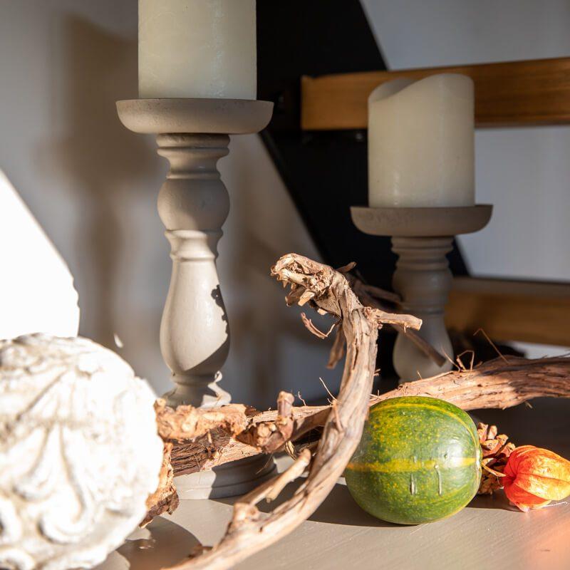 vakantiewoning met paardenhotel alphen brabant villa Bianco 16