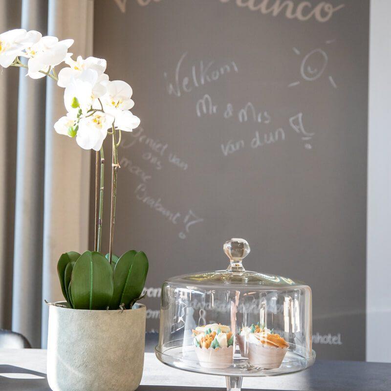 vakantiewoning met paardenhotel alphen brabant villa Bianco 22