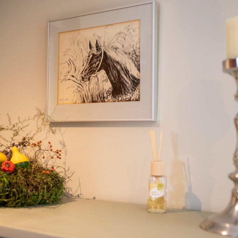 vakantiewoning met paardenhotel alphen brabant villa D'argento8