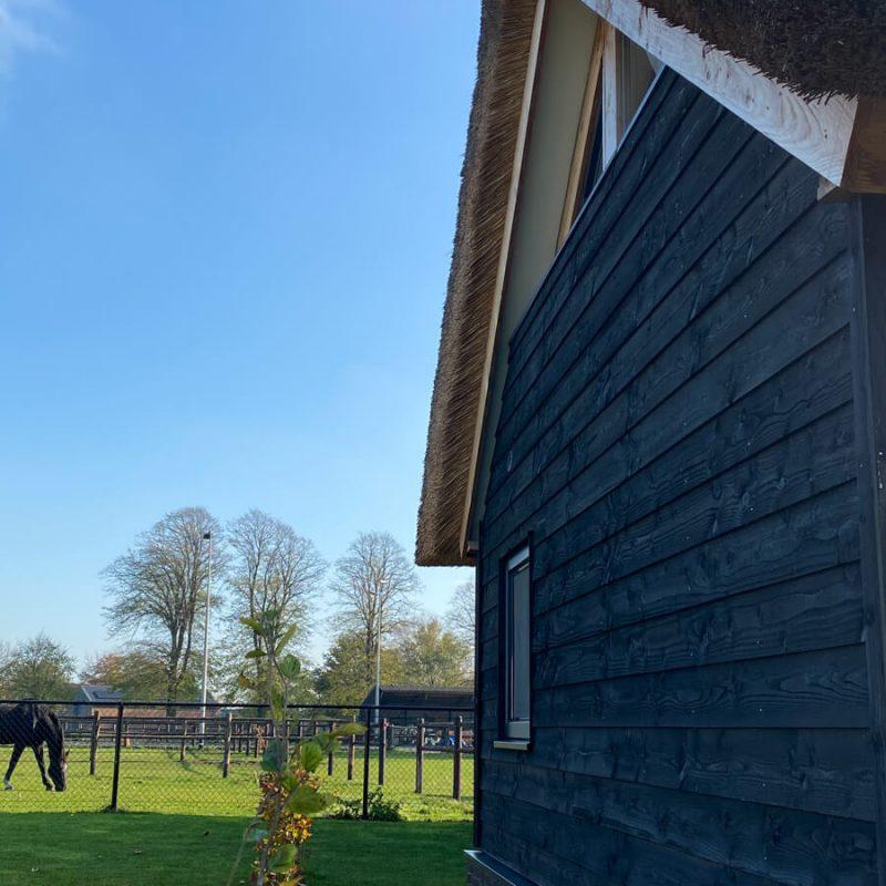 vakantiewoning met paardenhotel alphen brabant villa amore 1